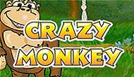 Crazy Monkey game slots